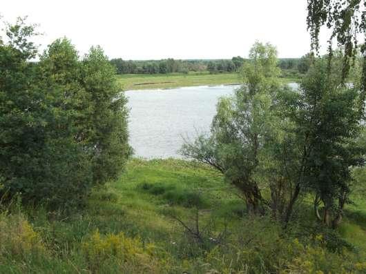 Продаю дом на берегу Припяти в г. Петриков в г. Гомель Фото 1