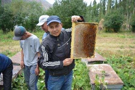 """Обучение, бизнес курс """"Пчеловодство"""" в г. Бишкек Фото 3"""