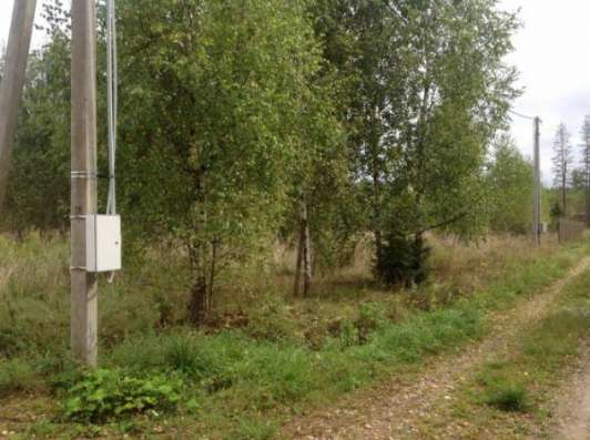 """Продается земельный участок в ДНП """"Березовая долина"""" (вблизи д. Бабынино) 119 км от МКАД Минское шоссе."""