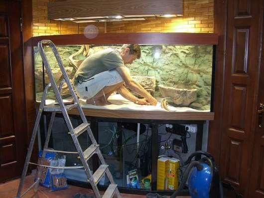 Абонентское обслуживание пресноводных аквариумов