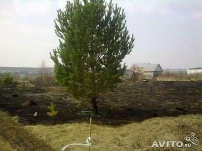 Куплю Преобрету стройматериалы в обмен на сад
