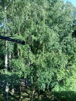 Продам 2х комнатную квартиру микрорайон Сертолово 1 в Санкт-Петербурге Фото 5
