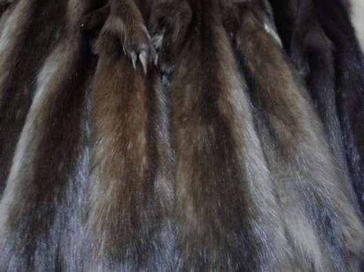 Мех соболя бургузинского натурального в Москве Фото 1