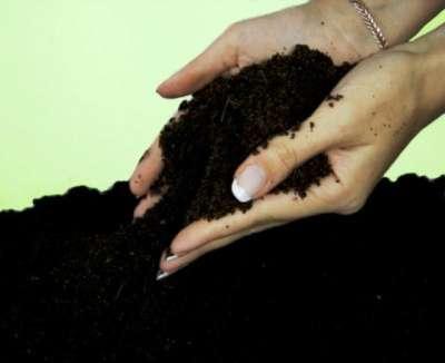продажа доставка чернозёма грунта навоза