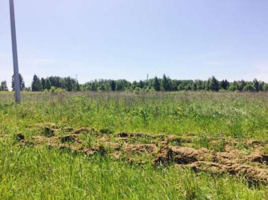 Продается земельный участок 12 соток в деревне Шиколово, Можайский район, 97 км от МКАД по Минскому, Можайскому шоссе.