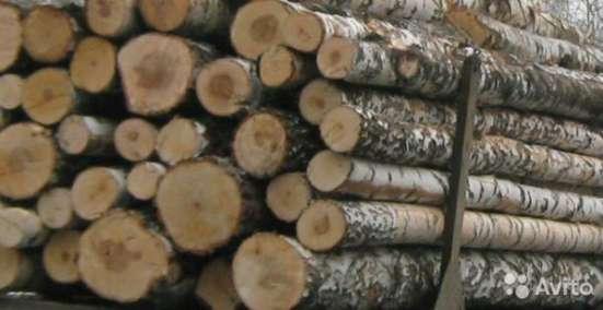 Круглый лес хвоя (зеленка, сухостой), береза, осина. в Калуге Фото 1
