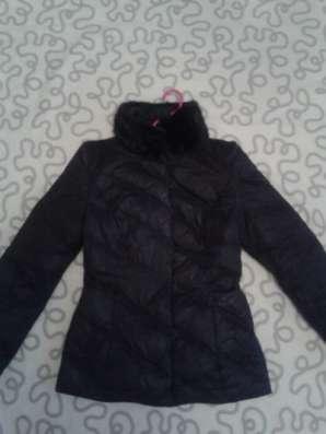 куртку осень-весна