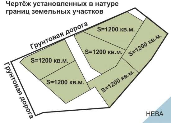Земля на берегу Невы в Санкт-Петербурге Фото 2