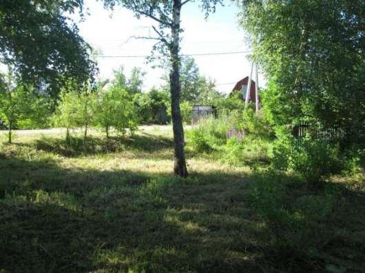 Продается земельный участок 30 соток в д. Макарово, Можайский р-он, 100 км от МКАД по Минскому шоссе. Фото 2