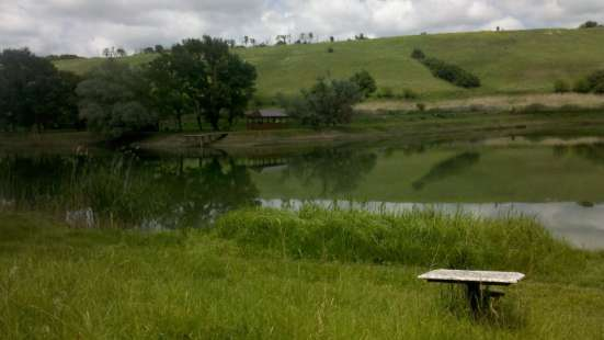 Загородный отдых, рыбалка