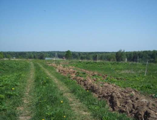 Продается земельный участок 18 соток в Сокольниково, Можайский район, 123 км от МКАД по Минскому шоссе. Фото 3