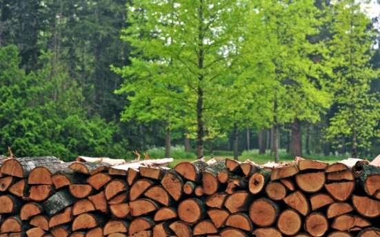 Ольховые дрова в Нарофоминске, Апрелевке,Селятино, Бекасово,Рассудово,Кубинка, Киевский,Ворсино
