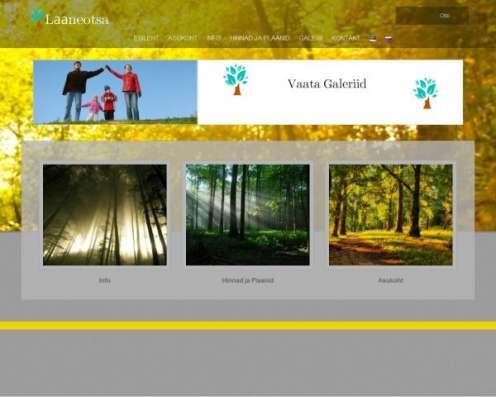 Создание сайтов в Эстонии