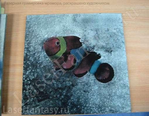 Гравировка фото любимых животных в Москве Фото 2