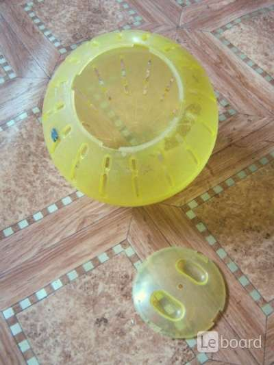 Какой прогулочный шар для сирийского хомяка